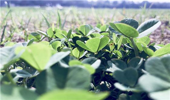 维美德向芬兰纺织品纤维厂提供干燥技术