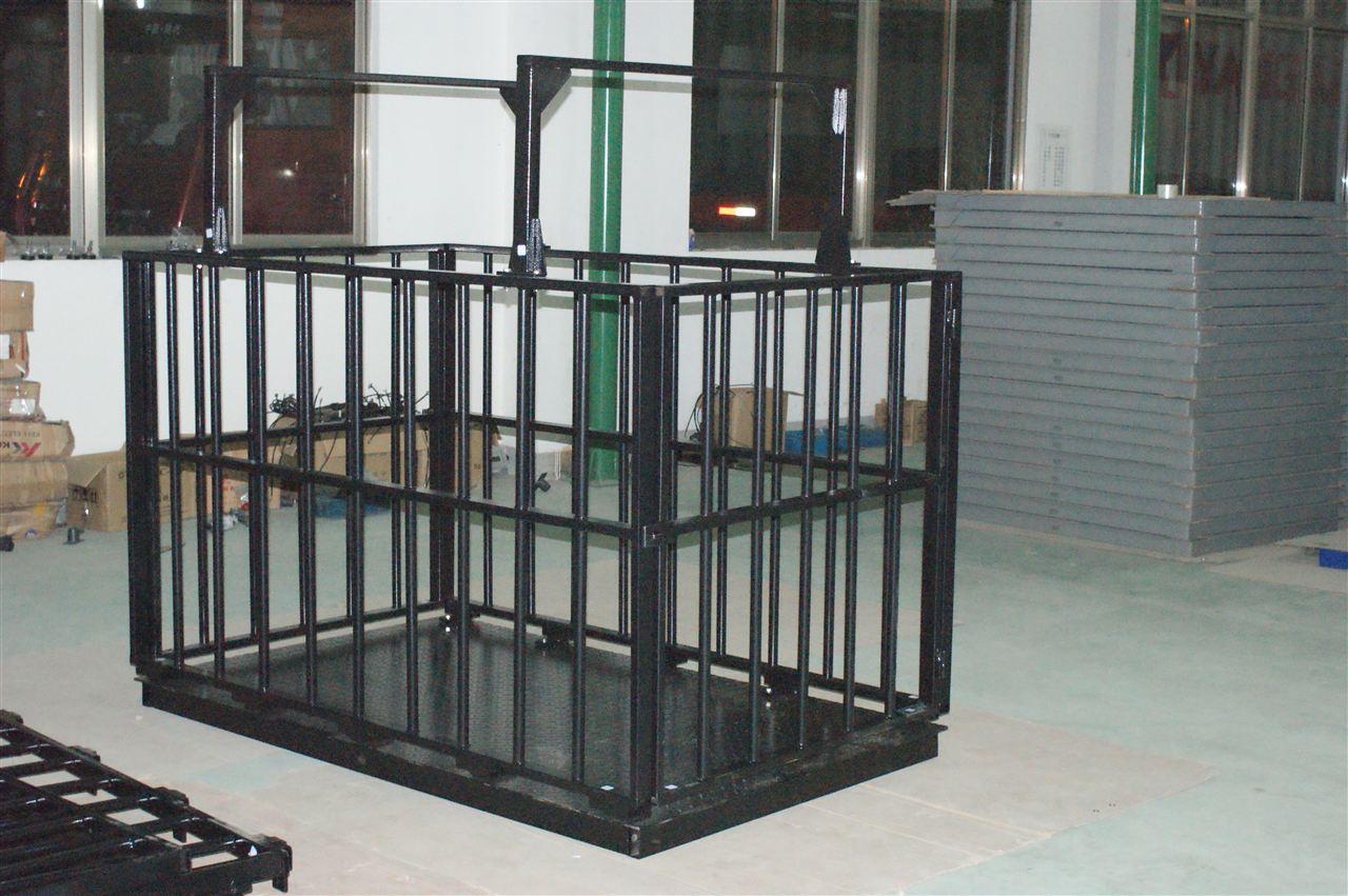供应亚津碳钢牲畜秤 大量程动物地磅秤2